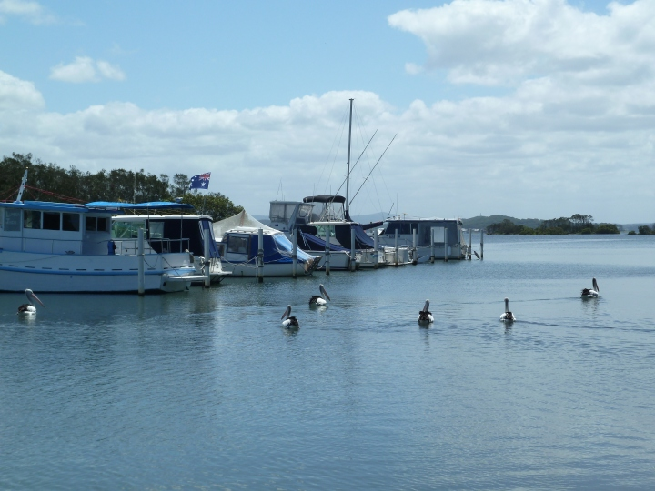Lake Macquarie, Swansea