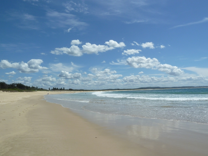 Discovering Blacksmith's Beach, NSW!